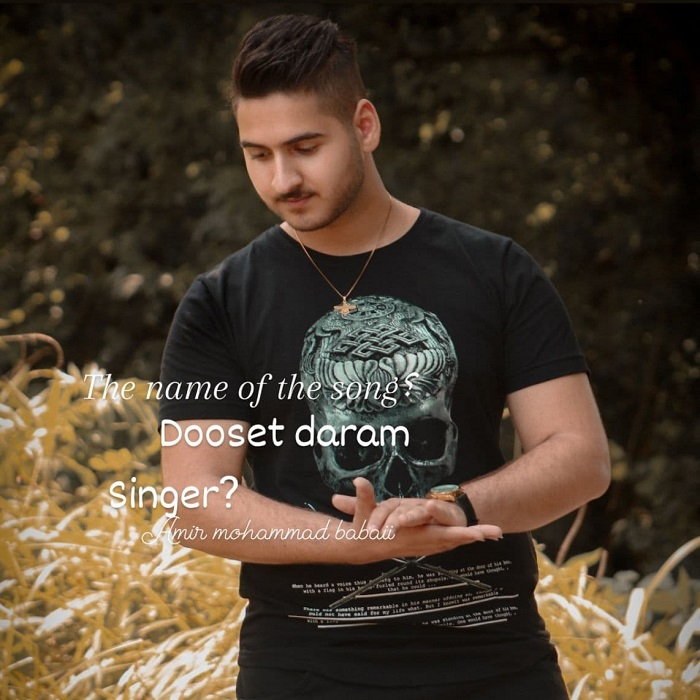 دانلود آهنگ جدید امیر محمد بابایی به نام دوست دارم